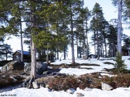 Les îles du Lac Inari