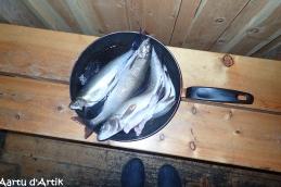 La belle pêche....